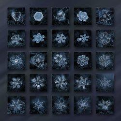 season-2013-dark-crystals-alexey-kljatov.jpg