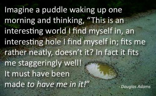 adams puddle.jpg