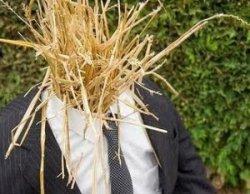 straw-man.jpg