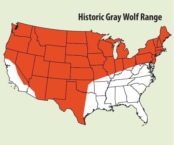 HistoricGrayWolfRange.png