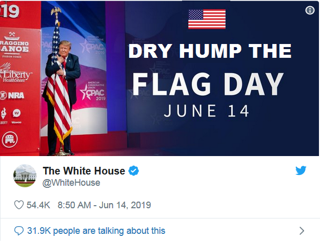 dry hump the flag day.png