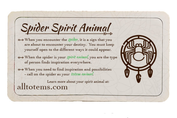 Spider-Card-with-Space-600x400.jpg