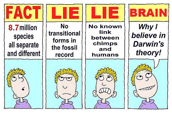 FACT LIE LIE BRAIN.png