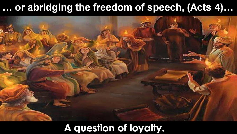 1st Amendment 03 - Freedom Of Speech.jpg