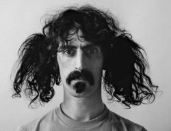 Zappa-Capture.JPG