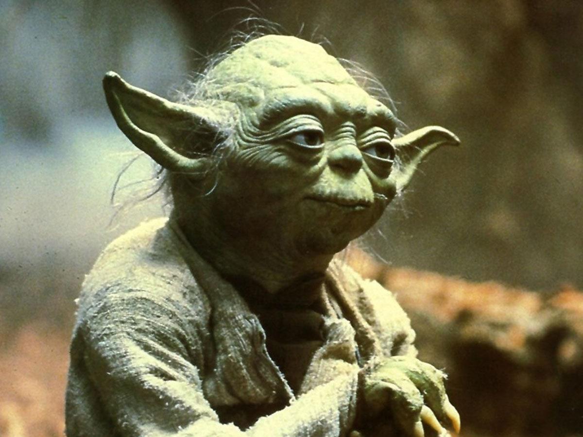 Yoda-featured1.jpg