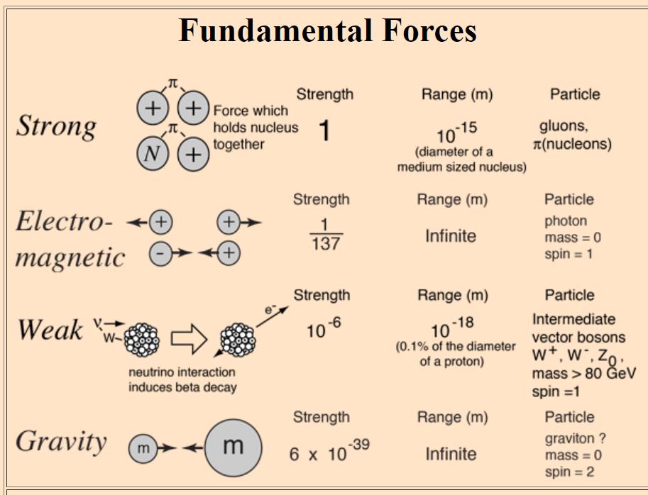 05.Fundamental Forces.PNG